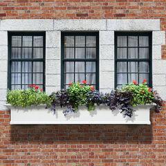 Mayne® Yorkshire 6' Window Box, WHITE