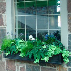 Mayne® Fairfield 5' Window Box, BLACK
