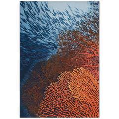 Liora Manne Marina Coral Indoor/Outdoor Rug, OCEAN