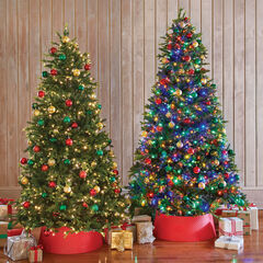 8½'H Fraser Fir Tree, GREEN